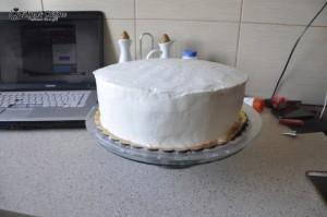 Tort cu crema de lamaie si jeleu de zmeura 014