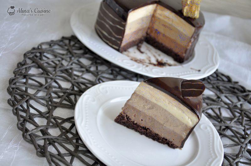 tort mousse au chocolat alinacuisine 214